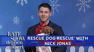 The Late Show 'Rescue Dog Rescue' With Nick Jonas