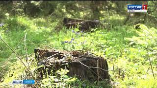 В Тарском районе разграничивают природный заказник «Урочище Екатерининское»
