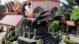 Scorpion Temple in Mae Sai