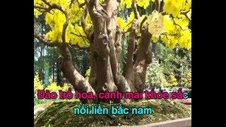 Karaoke - Đất Nước Đón Xuân Remix (Chế Trách Ai Vô Tình) - Beat DJ