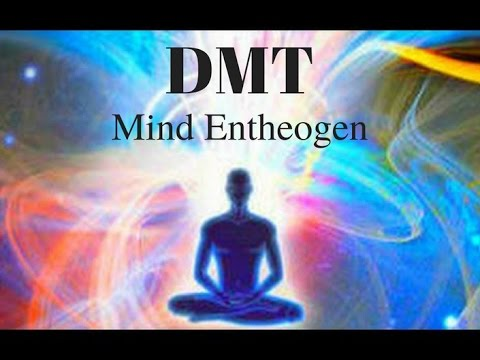 Where Can You Find Dmt Naturally