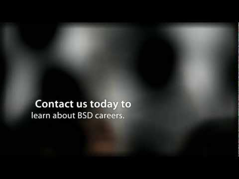 BSD Solutions - Join Our Team