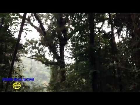 Costa Rica Active - Bold Earth Teen Adventures