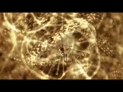 Ayahuasca DMT Drug Trip Sequence HD - YouTube