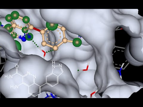 application story: discovery of a low molecular weight inhibitor for BTK - recapitulated with SeeSAR