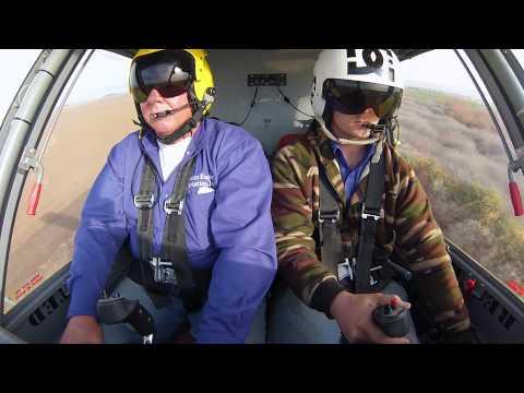 Bill Dare 504 Pilot Report
