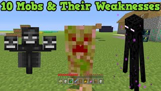 Minecraft - 10 Mobs & Their Weaknesses