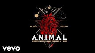 A.N.I.M.A.L - Fieles (Official Audio)