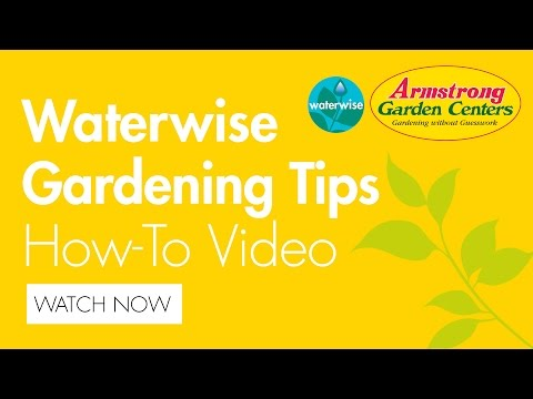 Waterwise Gardening Tips