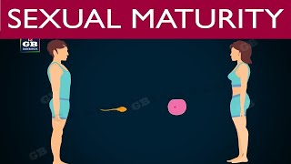 Sexual #reproduction in human beings |puberty | 10th biology| ncert class 10 |science |cbse syllabus