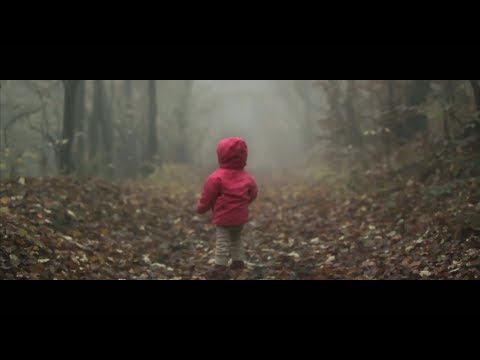 Lost In Forest - Short Video