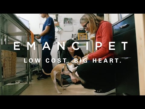 Emancipet: Helping keep pets healthy, happy & safe at home
