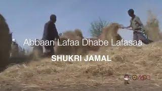 Shukri Jamal – Abbaan Lafaa Dhabe Lafasaa / Vidiyoo: OroMP3.com