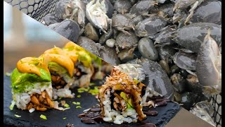 Turning DISGUSTING SAND FLEAS Into DELICIOUS SUSHI!!
