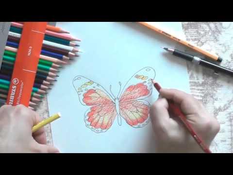 Рисуем бабочку. Учимся работать с цветом.