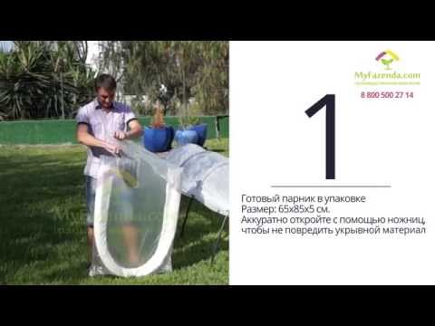 Видео: Парник Фазенда