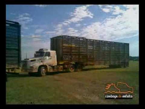 Homenagem aos Caminhoneiros - Tribute to Truck Drivers