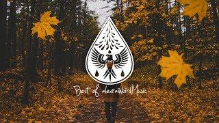 Best of alexrainbirdMusic // Vol. 1 (300k Subscribers Playlist)