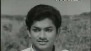 E Divilo Virisina- Telugu Movie Kanne Vayasu_1973_ Full HD Video Song - YouTube.mp4