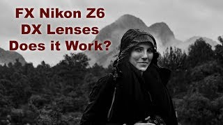 Nikon Z6 using DX Lenses at 10 mp. Does it Work?