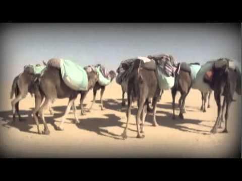 Expédition Maroc - Fondation Marie-Vincent