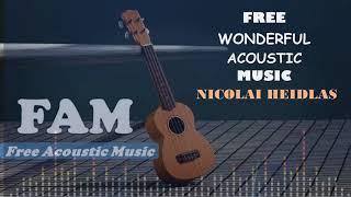 FREE WONDERFUL ACOUSTIC MUSIC - NICOLAI HEIDLAS