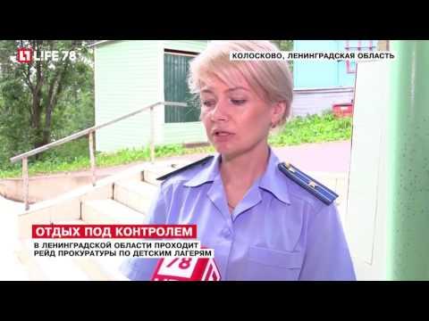 В Ленинградской области проходит рейд прокуратуры по детским лагерям