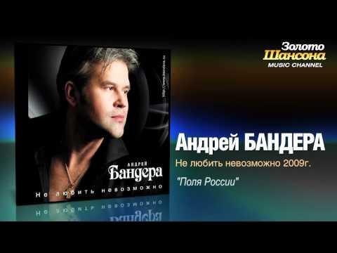 Андрей Бандера - Поля России (Audio)