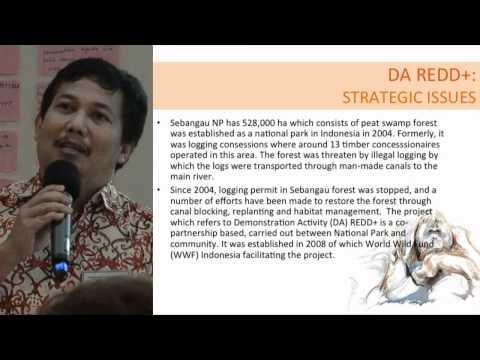 Bambang Supriyanto - Deputy Director, PKPA