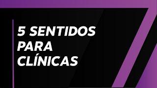 MIX PALESTRAS   Silvane Castro   Como Fidelizar Clientes