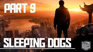 Sleeping Dogs: Part 9, Amanda [Story]