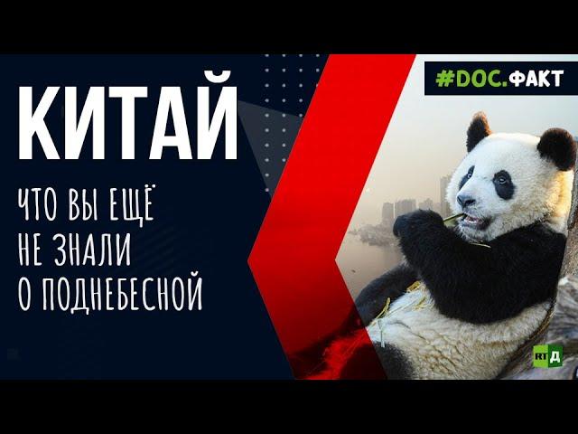 Необычные факты о Китае: от камер хранения для мужей до «панда-дипломатии»