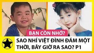 Sao Nhí Việt Đình Đám Một Thời, Bây Giờ Ra Sao? Phần 1