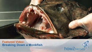 Breaking Down a Monkfish