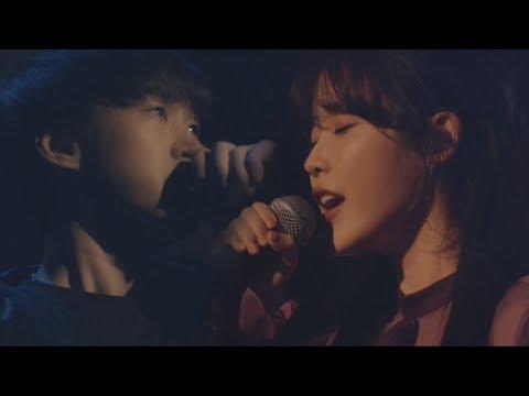 EPIK HIGH X IU (에픽하이 X 아이유) - 연애소설 (LOVE STORY) LIVE @ WDSW Concert