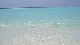 モルディブの海4