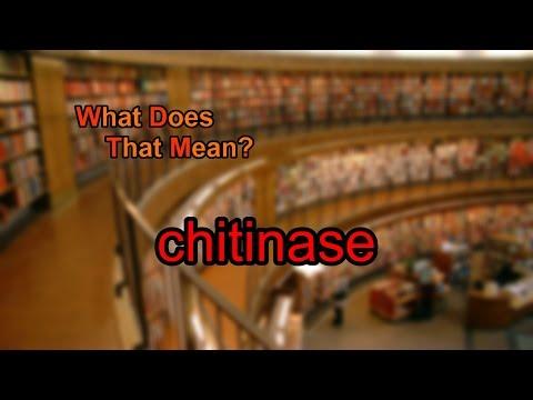 Chitinase