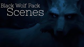 WHITE FANG (2018) - Black Wolf Pack Scenes