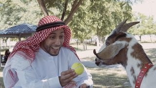 Man's Best Friend | Anwar Jibawi