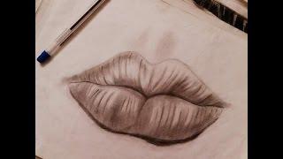 تعليم الرسم البسيط     -