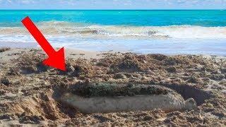CRAZIEST Things Found On The Beach!