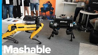 A Robot Dog Empire in the Making: SpotMini Meets Its Rival, ANYmal – Genius Moments