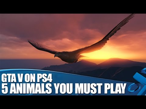 GTA V on PS4: 5 Animals You Must Play As