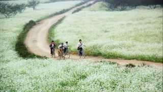 Cảnh đẹp Việt Nam Đất Nước Con Người
