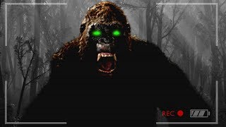 FINDING BIGFOOT & MISSING PEOPLE!! (Finding Bigfoot Game)