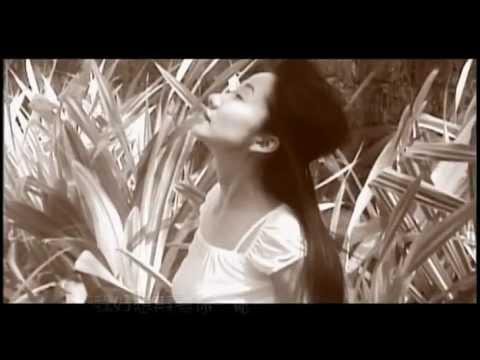陶晶瑩-十天又三天