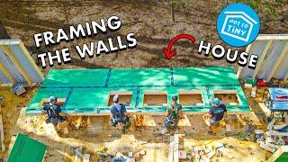 FRAMING THE WALLS ON MY TINY HOUSE! // (Not So Tiny) House Build Part 5