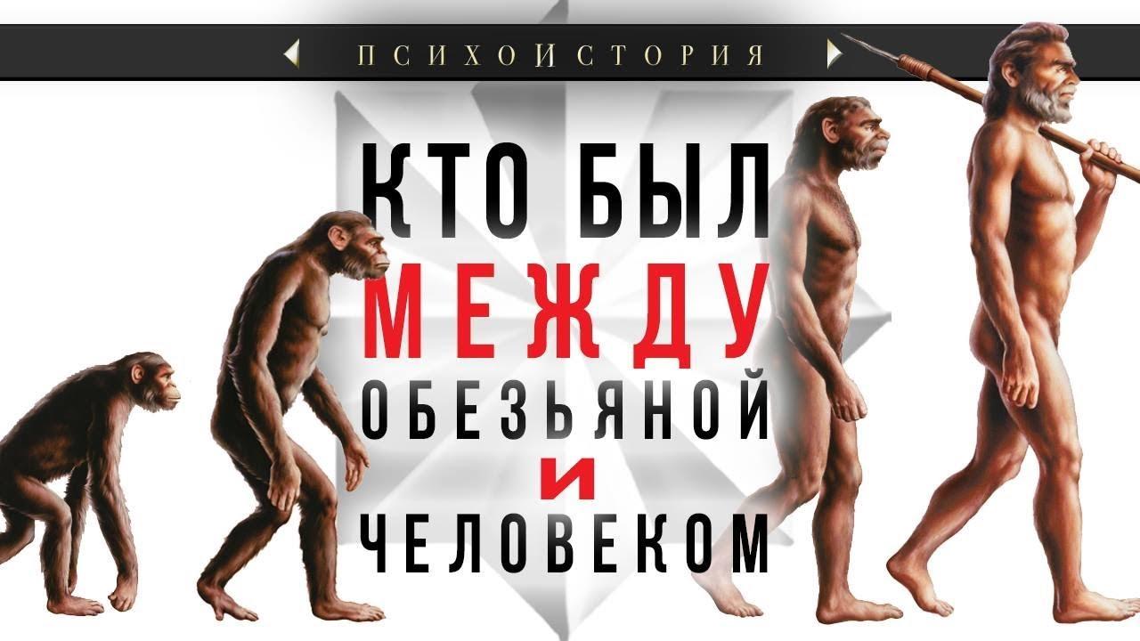 Кто был между обезьяной и человеком?