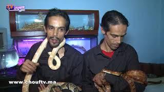 أنا و صاحبي الحيوان..توأم مربيين جميع أنواع الثعابين..شوفو كيفاش كيوكلوهم وهاكيفاش كايتوالدو       أنا و صاحبي الحيوان