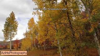 Maples Loop in Autumn, Utah Best Trails - Travel - Classical Music - Photography - 1